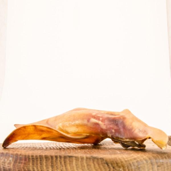 Schweineohren mit Muschel